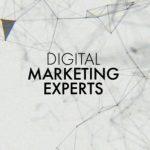 Digital Marketing and SEO Promotion